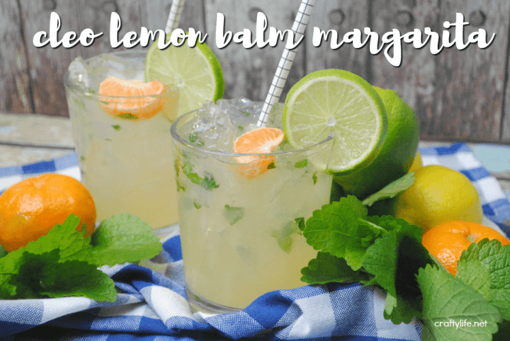 Whip up this yummy, lemony margarita recipe to compliment any Cinco de Mayo celebration!
