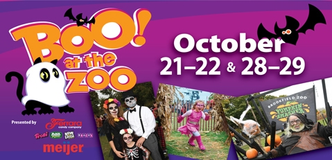 halloween events in chicago  - Boo at the Zoo