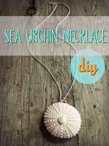 Sea Urchin Necklace 7