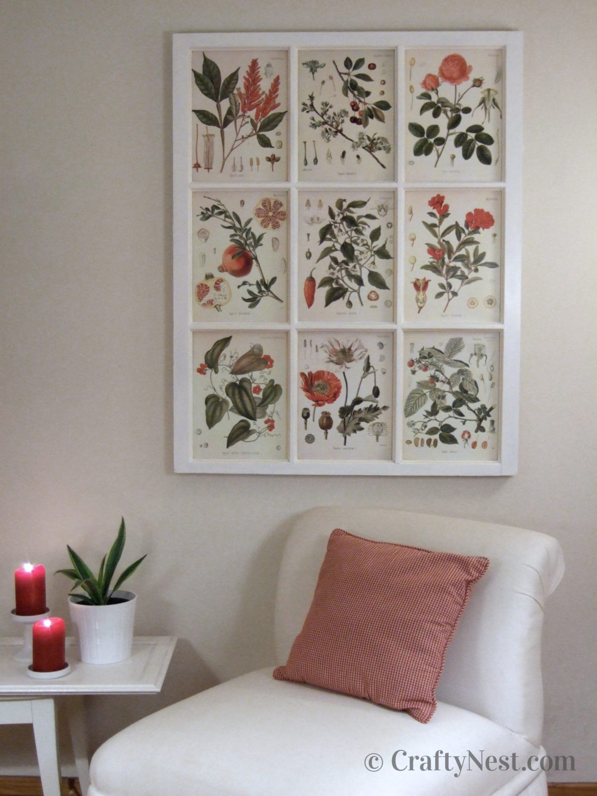 Bonical illustrations framed in a salvaged window, photo