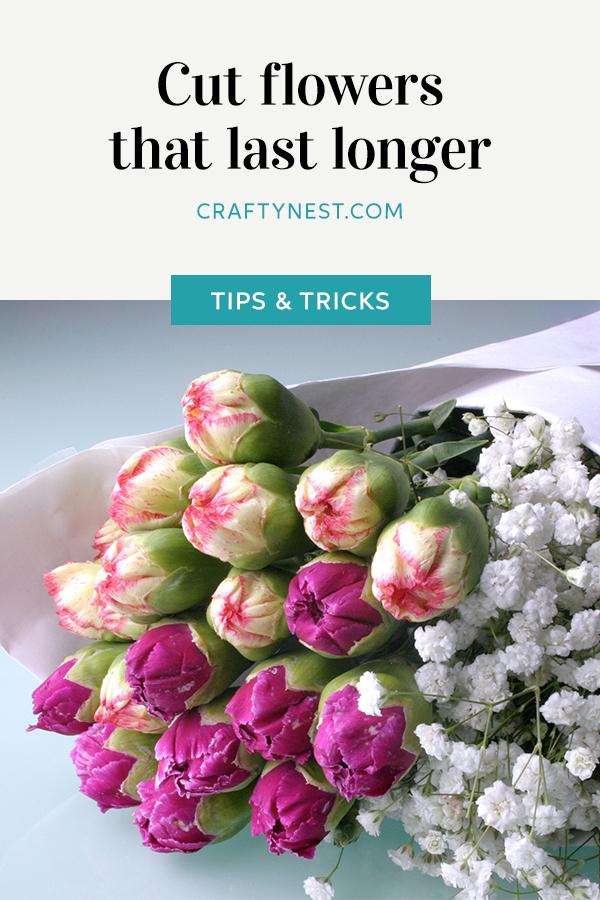 Crafty Nest long lasting cut flowers Pinterest image