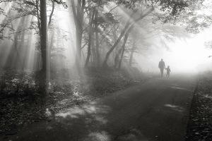 walk-in-the-light-floriana-barbu