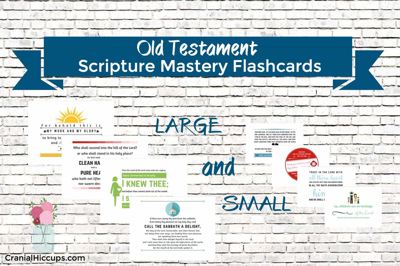 Old Testament Scripture Mastery Flashcards Cranial Hiccups