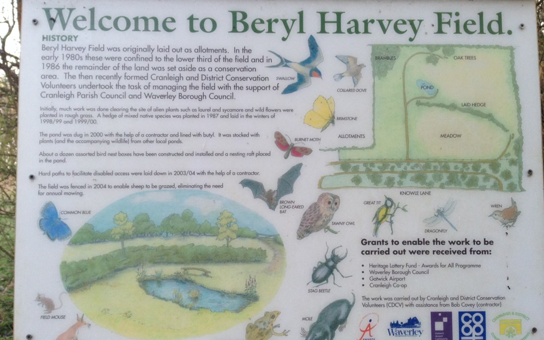 Beryl Harvey Conservation