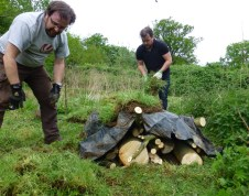 Building a home for Great Crested Newts