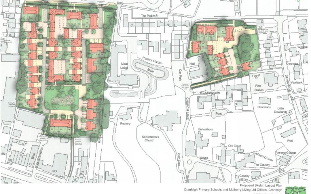 Concerns over plans for New Junior School in Cranleigh