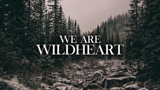 Crannk Interviews Wildheart