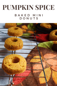 Pumpkin Spice Baked Mini Donuts - Gluten Free!