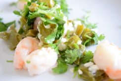 Shrimp Nopales-012