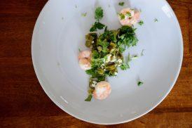 Shrimp Nopales-020