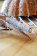 Cinnamon Roll Jackaloupe-004
