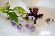 Lavender Cinnamon Vinaigrette-001