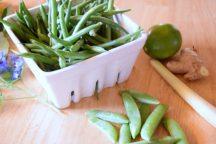 Zesty Mixed Fresh Beans-002