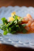 Triple Citrus Shrimp-009