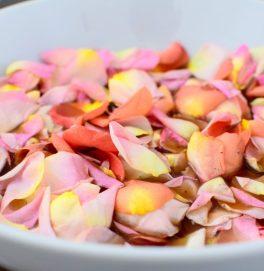Pickled Rose Petals-010