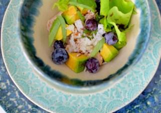 Blueberry Basil Avocado Salad-003