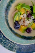 Blueberry Basil Avocado Salad-008