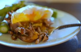 Wild Mushroom Asparagus Poached Egg-014