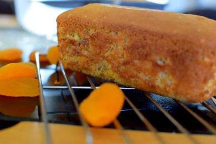 Apricot Bread-021