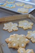 The Perfect Sugar Cookie-013