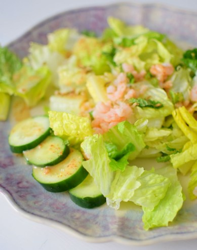 Fennel Mint Salad with Grapefruit Vinaigrette-001