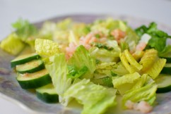Fennel Mint Salad with Grapefruit Vinaigrette