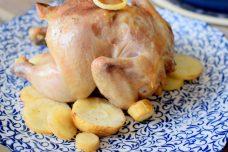 Lemon Parsnip Cornish Hens-006