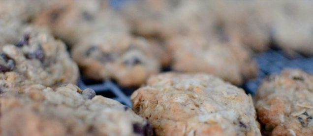 Marla's Monster Cookies-003