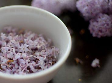 Sugared Lilac Cake-003