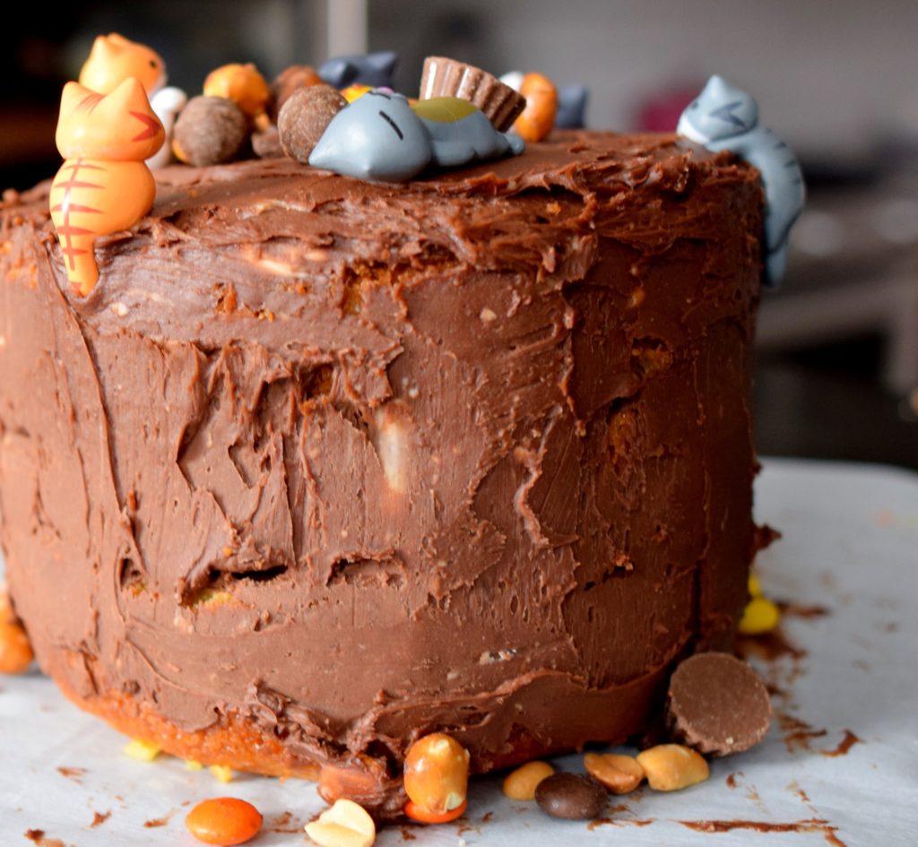 Astonishing Kitty Cat Surprise Cake Recipe Craving4More Funny Birthday Cards Online Elaedamsfinfo