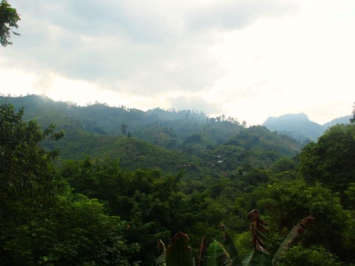 El Muro View