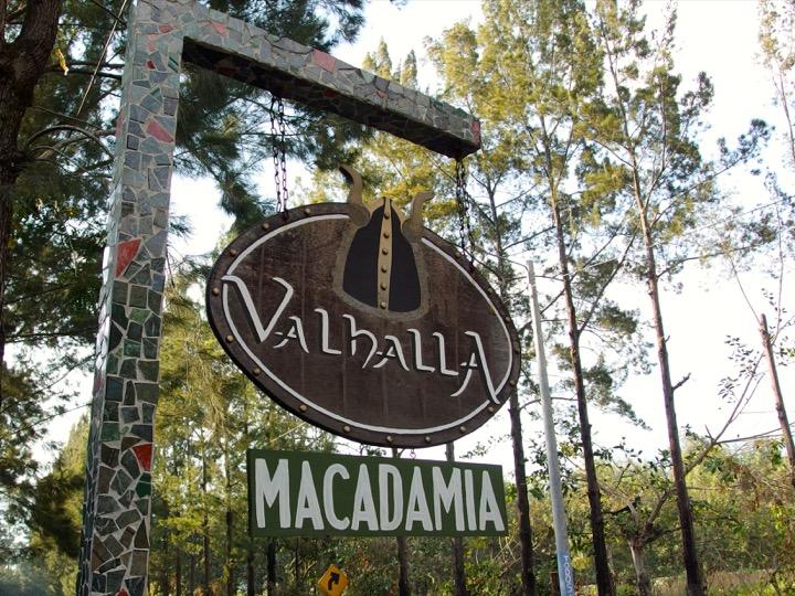 Valhalla Macadamia Nut Farm