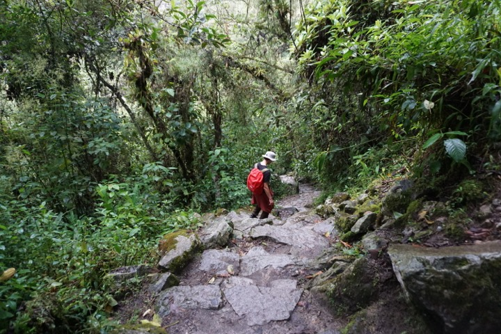 Hiking down the steep staircase from Machu Picchu.