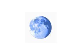Palemoon logo