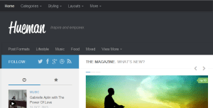 hueman best wordpress theme