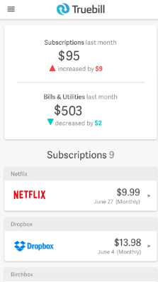 save netflix money