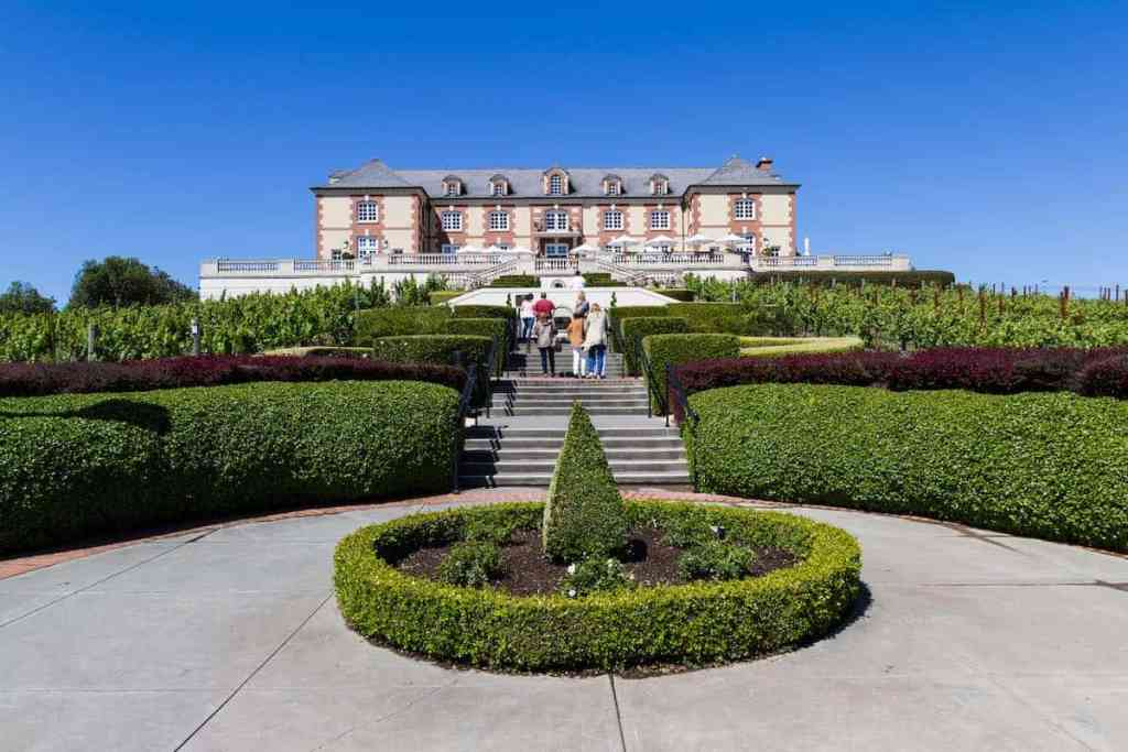 Napa and Sonoma Winery Tour