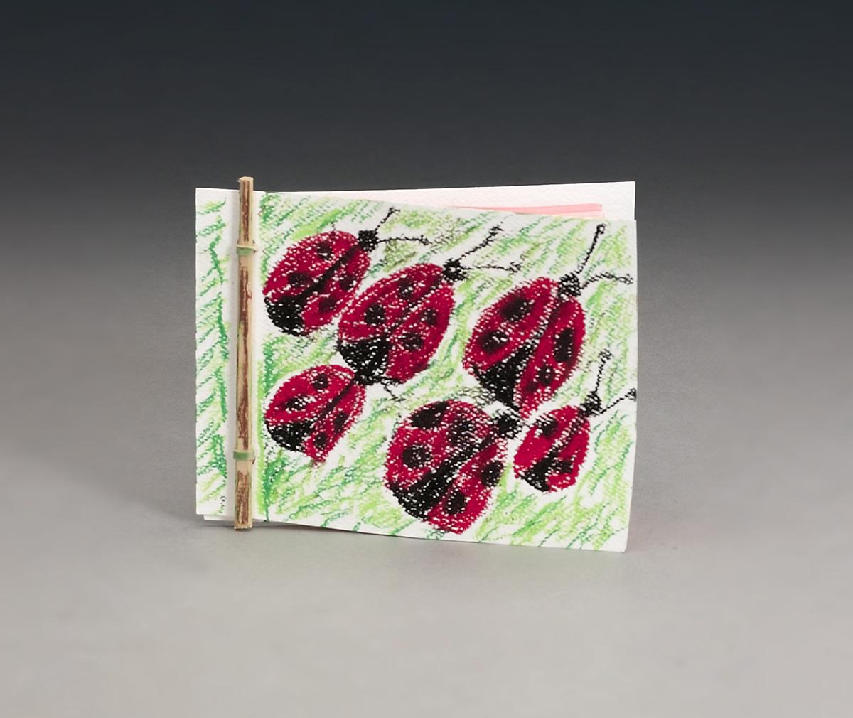 Book On A Stick Craft