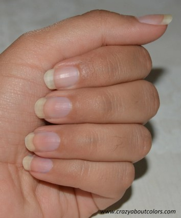 ombre nails  (2)