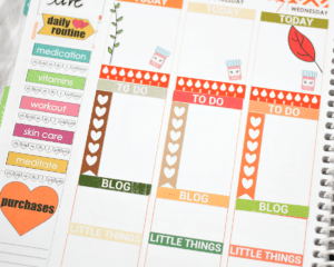 Top 9 tips for using the Erin Condren Life Planner.