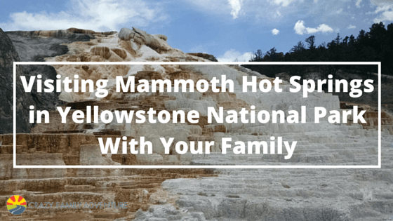 Visiting Mammoth Hot Springs In Yellowstone