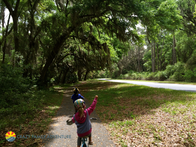 Things To Do On Jekyll Island With Kids Crazy Family Adventure