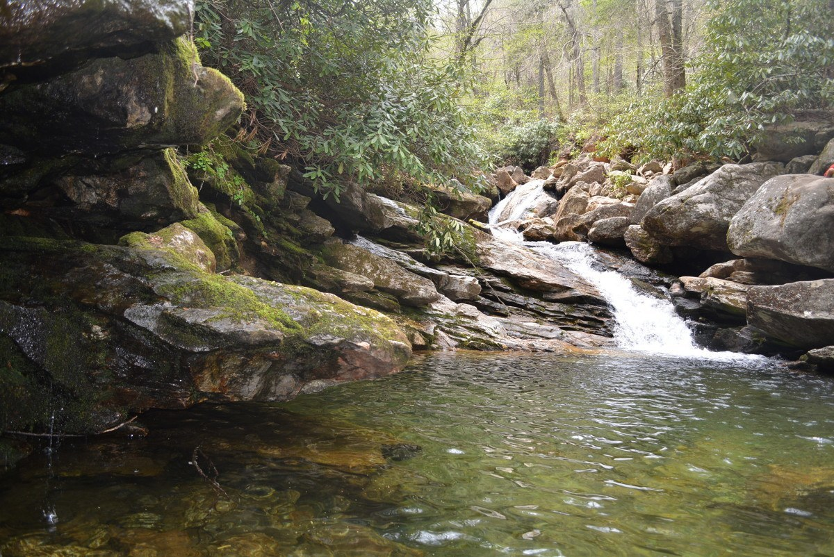 Hiking With Kids By Asheville