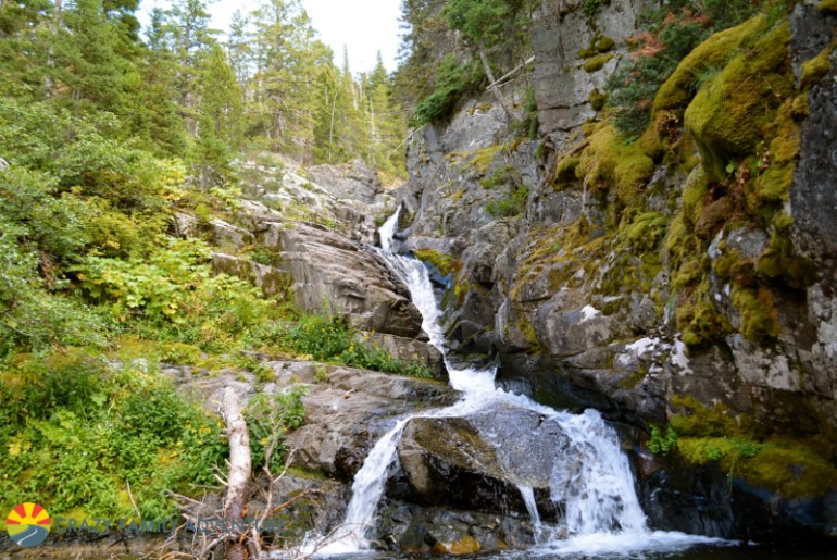 Aster Falls is #8 on our list of best hikes in Glacier National Park with kids