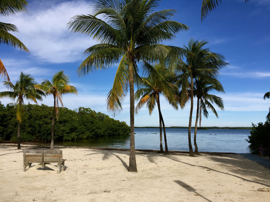 John Pennekamp Beach on The Ultimate Florida Road Trip