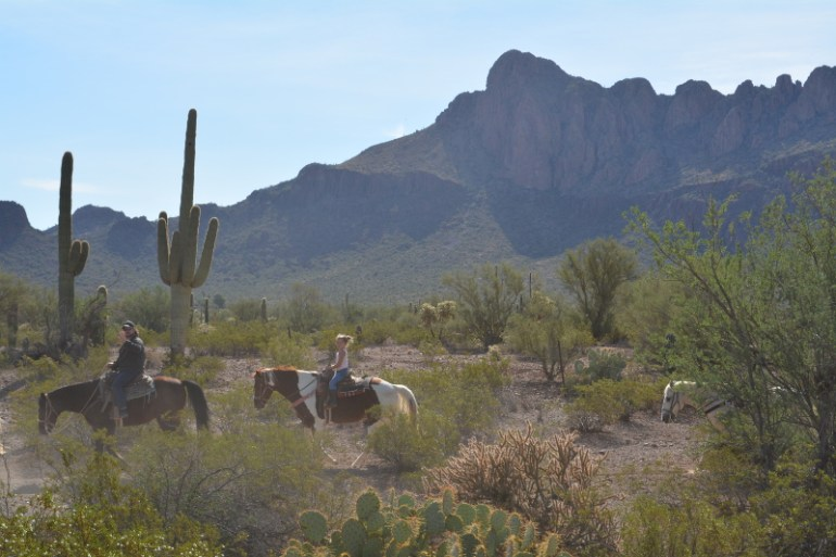 Things to do in Tucson with kids - horseback riding at white stallion ranch