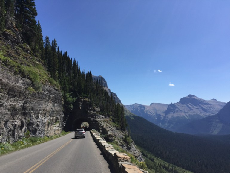 The going to the sun road is one of our favorite things to do in Glacier national park with kids