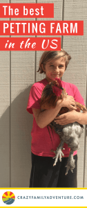 This is by far the number 1 petting farm in the US! You and your kids will enjoy a full day spent exploring 39 fun & unique experiences at Green Meadows Farm in Wisconsin from the petting farm to the climb/play equipment this place is amazing!