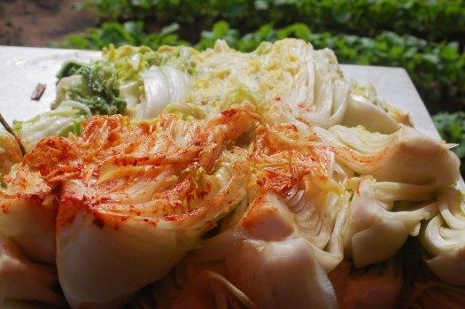 Crazy Korean kimchi making 4