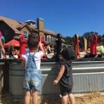 Family Fun on Sweetfields Farm